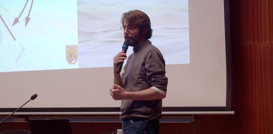 Biomimétisme : le vivant comme modèle de société