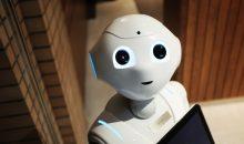 Le robot comme outil de simulation pour comprendre le cerveau